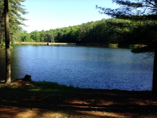 Charlie Horse - Mile 1 Lake