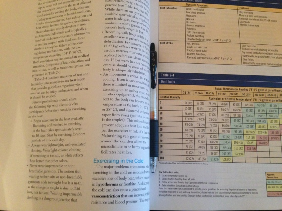 ACE Fitness Certification Studying