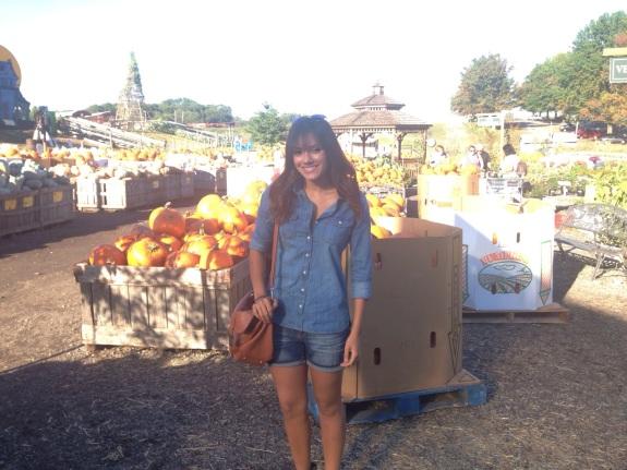 In front of Pumpkin Field