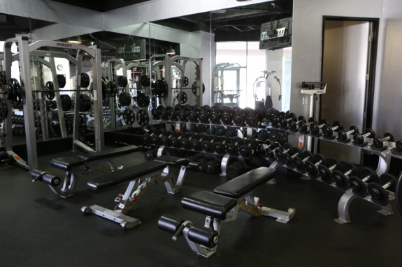 Free Weight Section at Gym